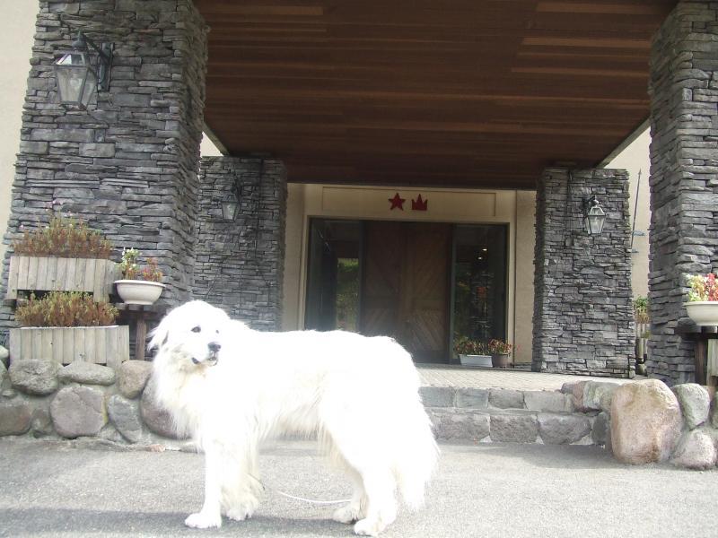大山レイクホテル